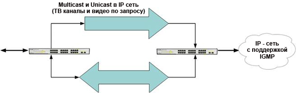 scheme IP-multicast